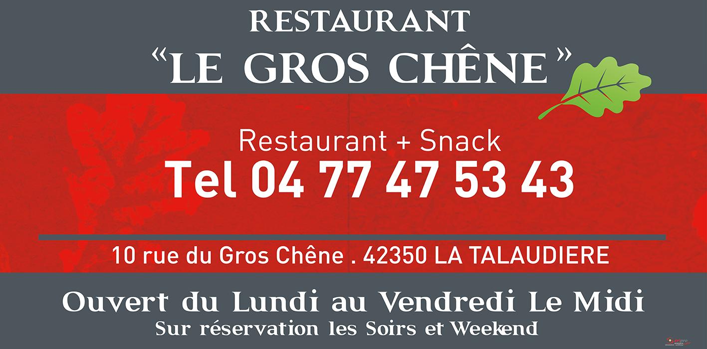 LE GROS CHENE-01